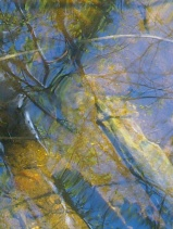 TRADITIONAL WATER MIRRORING 6