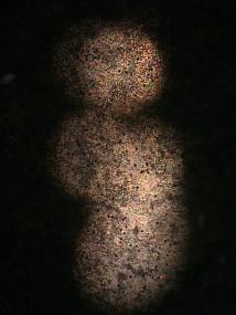 ESOEXO 8