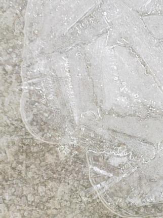 ICE 8