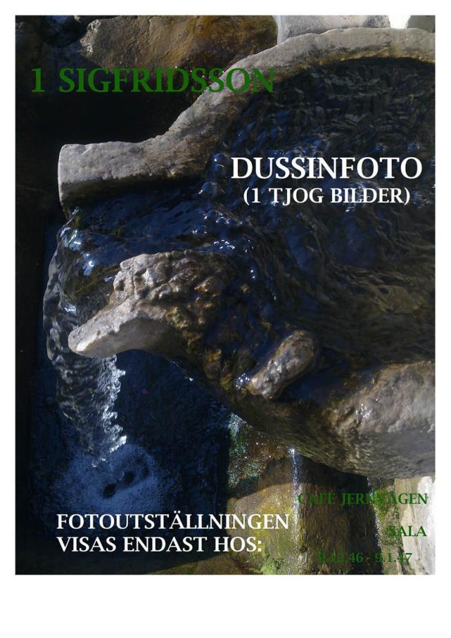1 SIGFRIDSSON DUSSINFOTO (1 TJOG BILDER)