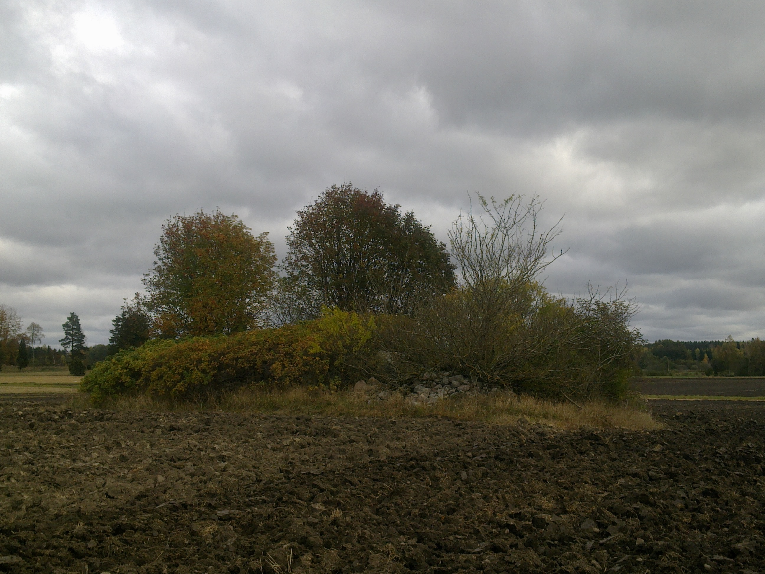 field-island-21