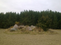 field-island-28