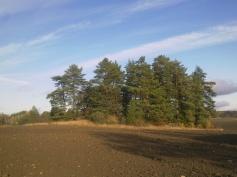 field-island-33