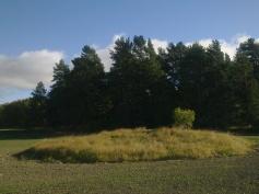 field-island-35