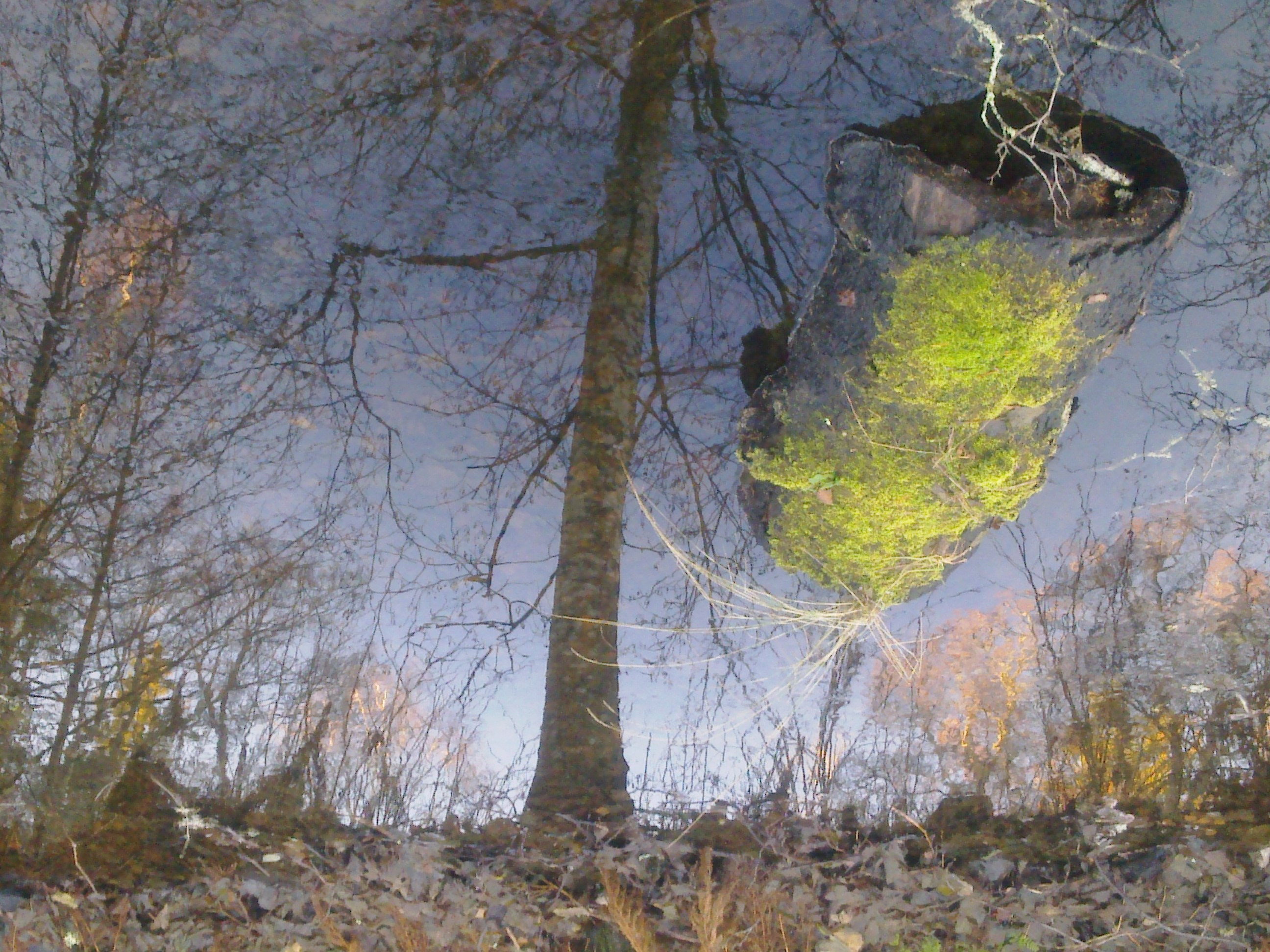 water-and-ice-mirroring-1