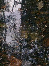 water-and-ice-mirroring-22