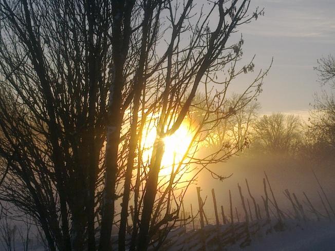 winter-1